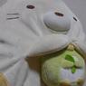 takapi_Jr